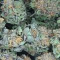 Michigan employers can discriminate against medical marijuana users, court says