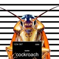 Detroit man shoots himself in the foot attempting to kill cockroach