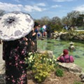 Koi Festival returns to Belle Isle with free celebration of Japanese culture