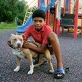 A boy plays with a bully breed dog at a park.