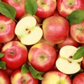 ADVISORY: Officials ask consumers to dispose of possibly contaminated apple cider