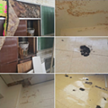 Detroit teachers are using Twitter to document poor school conditions
