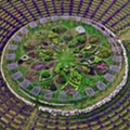Michigan is home to a huge lavender labyrinth