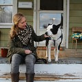 After being shot by a Detroit cop, Millie the dog learns to love again