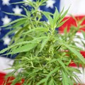 Historic vote to decriminalize marijuana in the House is postponed as moderates pump the brakes