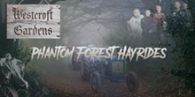 phantom_forest.jpg