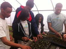 663cc39a_greencorps_planting_at_dmg.jpg