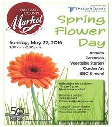 26b97a71_spring_flower_day_flyer.jpg