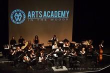 6afa7c54_arts_academy_macomb_center_2015.jpg