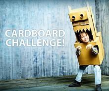 c0d3a540_a2_art_center-_cardboard_challenge.jpg