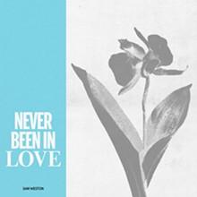 never_been_in_love.jpg