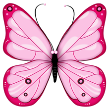 cc1032ab_butterflies.png