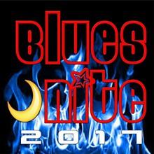 a8c05dde_blues_nite_2017_logo.jpg
