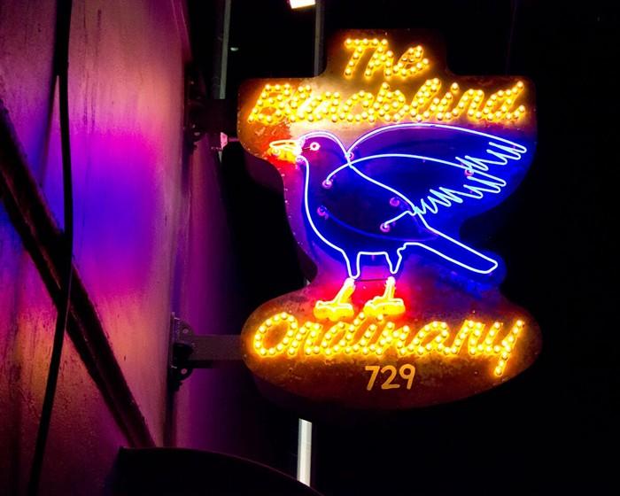 Jenny From the Block Party at Blackbird Ordinary: See Wednesday - PHOTO COURTESY OF BLACKBIRD ORDINARY