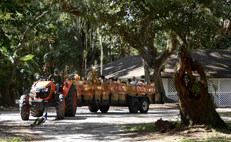 Flamingo Gardens is the place for your hayride needs this fall. - PHOTO COURTESY OF FLAMINGO GARDENS