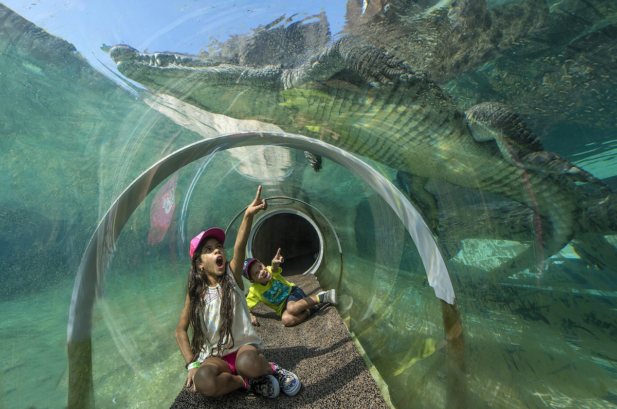 s_r-place_to_take_kids-zoo_miami-photo_courtesy_of_zoo_miami.jpg