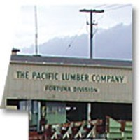 Top Ten Stories of 2007 1. Bankrupt: Pacific Lumber Company Mill in Fortuna. File photo.