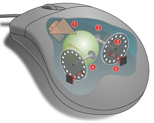 1: Pulling the mouse turns the ball. 2: X and Y rollers grip the ball and transfer movement. 3: Optical encoding disks include light holes. 4: Infrared LEDs shine through the disks. 5: Sensors gather light pulses to convert to X and Y velocities. - WIKIMEDIA COMMONS