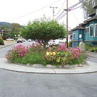 Best Of Humboldt -- Staff Picks 14th & I roundabout. Photo by Heidi Walters