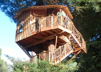 A Home in a Redwood
