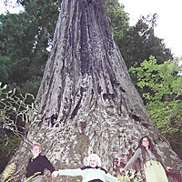 "What Now, Treesitter? Activists Naomi Wagner and Jeanette Jungers -- on their first visit to this treesit -- join hands with Amy Arcuri, who with ""Lodgepole"" established the treesit in this tree they named Spooner, in the Nanning Creek watershed. Photo by Heidi Walters"