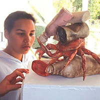 Pollution as Art Amyia Murry from Peninsula Union School studies Jimmie Nord's, Decorator Crab. Photo by Katherine Almy.