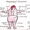 Anatomy of Christmas