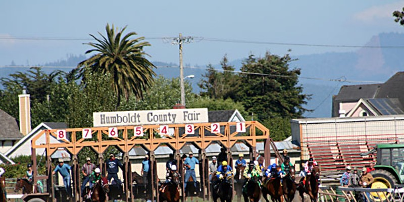 Eight Days at the Races And they're off! Horses leave the starting gate at a 2008 Ferndale Race.
