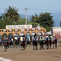 And they're off! Horses leave the starting gate at a 2008 Ferndale Race.