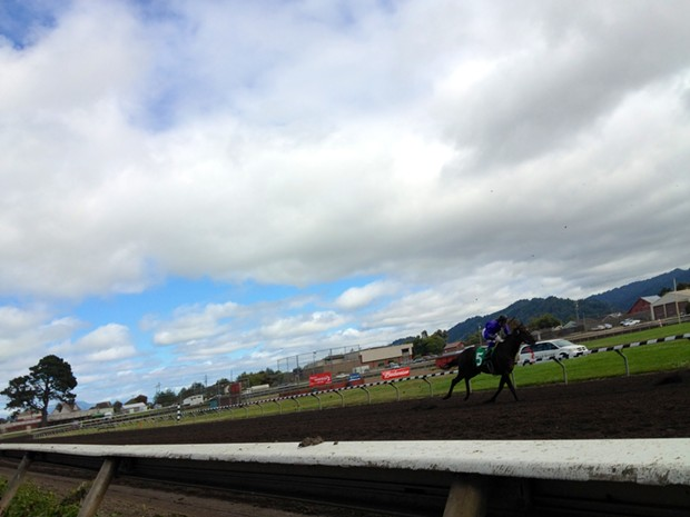 At the Ferndale racetrack, Aug. 17, 2013 - PHOTO BY HEIDI WALTERS