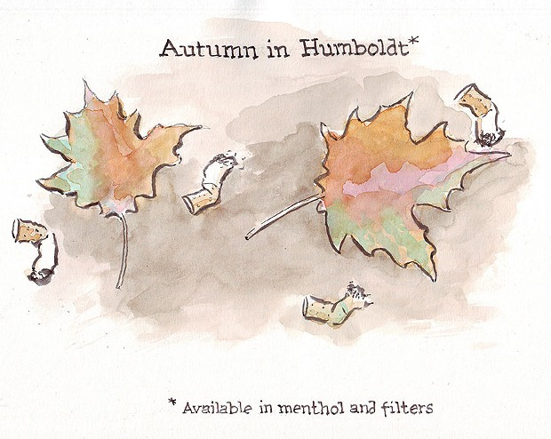 Autumn in Humboldt
