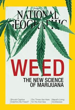 weed-1.jpg