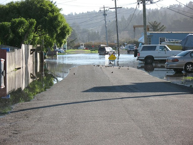 Humboldt Bay — Perch Road, King Salmon, Dec. 13, 2012. - PHOTO BY TIM CLOHESSY/COURTESY HUMBOLDT BAYKEEPER