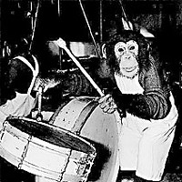 Saga of an Ape — The surprising true story of the late Bill the Chimp Bill and Pepe perform in their popular circus acts. Photos courtesy of Willy Lenz.