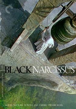 e0201e3d_black-narcissus-bf703605.jpg