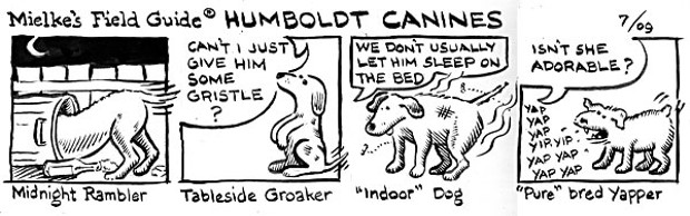 Humboldt Canines