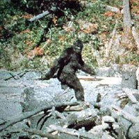 Clap if you believe in Bigfoot.