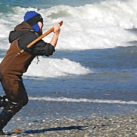Love Me, I'm a Lamprey Cliff Moorehead has snagged another lamprey and races ashore to add it to his catch. Photo by Matt Mais/Yurok Tribe