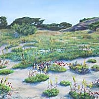 Wild Visions 'Color of the Dunes' by Paula Golightly.