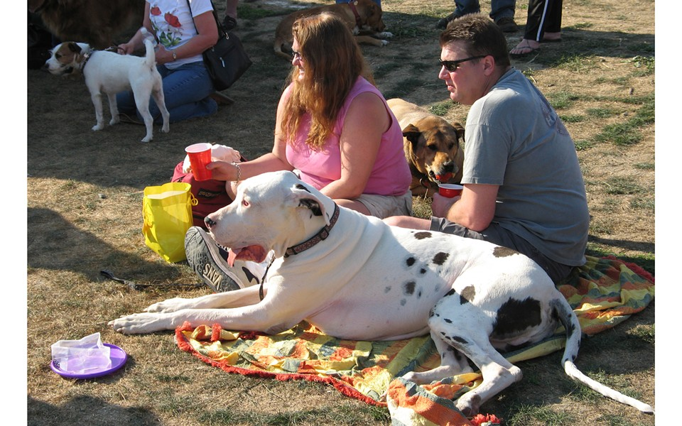 dogs and their people at Woofstock - PHOTO BY BOB DORAN