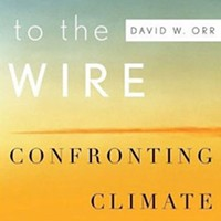 <em>Down to the Wire: Confronting Climate Collapse</em>
