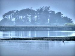 monday-morning-fog-2.jpg
