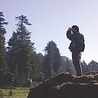 A Professional Birdwatcher