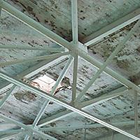 Can't Swim Eureka High School pool ceiling. Photo by Heidi Walters.