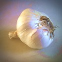 Garlic Patch Friends