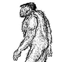 "BIGFOOT TRAPPED BY NORCAL FANATIC! Illustration of ""The Old Man"" — over 8 feet tall, 800 pounds — from Roger Patterson's 1966 book Do Abominable Snowmen of America Really Exist? Drawn one year prior to shooting his famous footage."