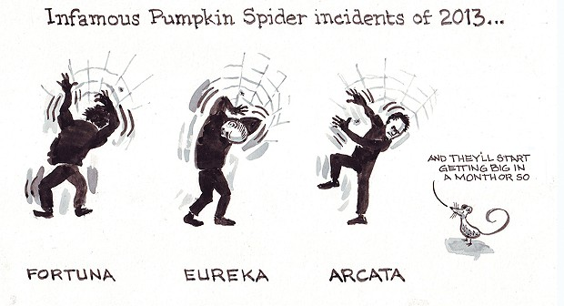 Infamous Pumpkin Spider Incident of 2013 …