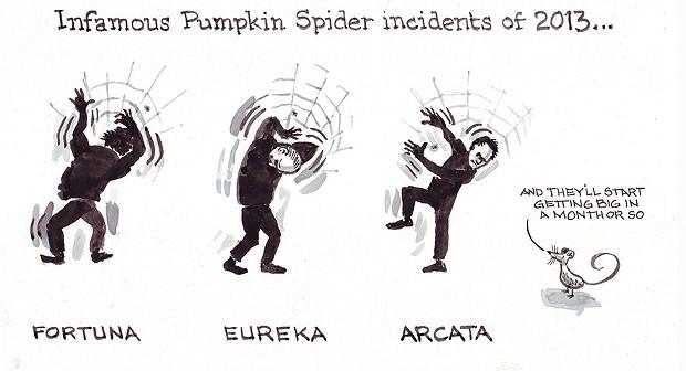 Infamous Pumpkin Spider Incident of 2013 …