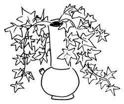 ILLUSTRATION BY LYNN JONES - ivy planter
