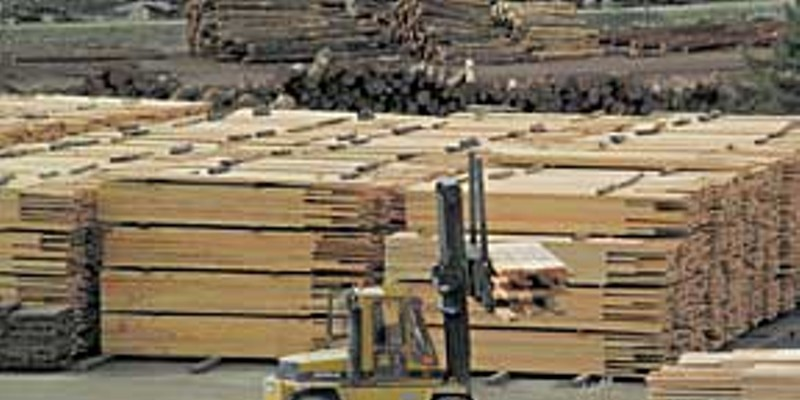 No Work? No Workers! Jobs lifting lumber may have dwindled, but there's still some work in the industry. Photo by Kyana Taillon.